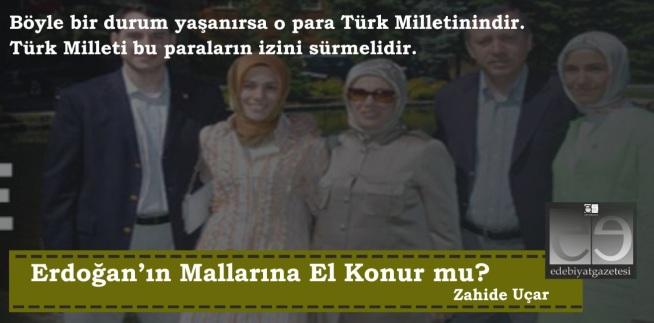 MALLARIMIZ